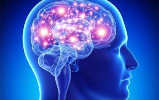 امضای مغزی