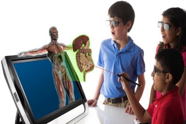 اسرار سلولهای عضلانی
